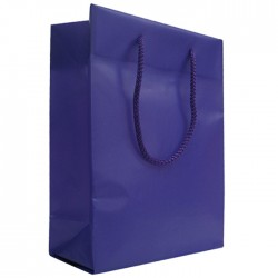 Frosted Plastic Bag - Purple
