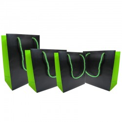 Two Toned Paper Laminated Bag - Black/Green