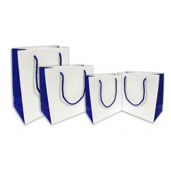 Two Toned Paper Laminated Bag - White/Blue